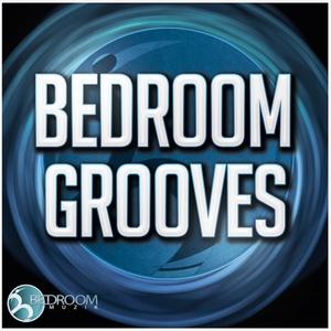 VARIOUS - Bedroom Grooves