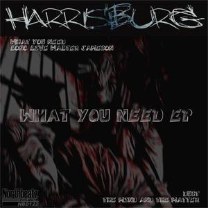 HARRISBURG - What You Need EP