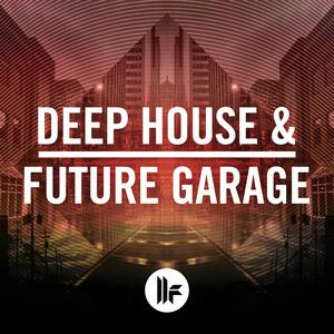 TOOLROOM - Deep House & Future Garage (Sample Pack WAV)