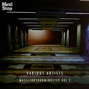 VARIOUS - MusicForYourMindStep Vol 2