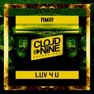 AMIR - Luv 4 U