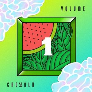VARIOUS - Crosswalk Vol 1