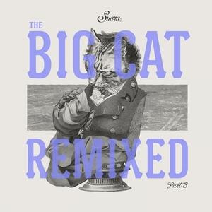 RAMIREZ, Charles/BAUM/COYU - The Big Cat Remixed Pt 3