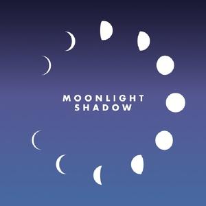 REILLY/MAGGIE - Moonlight Shadow (remix)