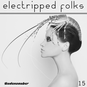 VARIOUS - Electripped Folks 15