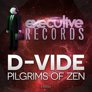 D VIDE - Pilgrims Of Zen