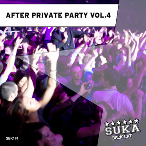 VARIOUS - After Private Party Vol 4