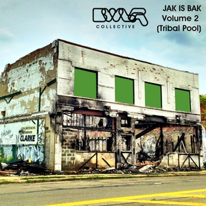VARIOUS - Jak Is Bak BWLR Collective Vol 2 (Tribal Pool)