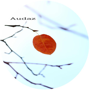 ALKALINO - Leaf Of Faith