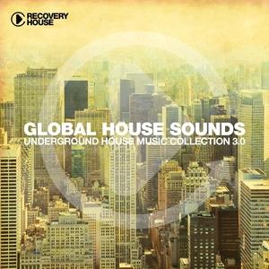 VARIOUS - Global House Sounds Vol 3.0