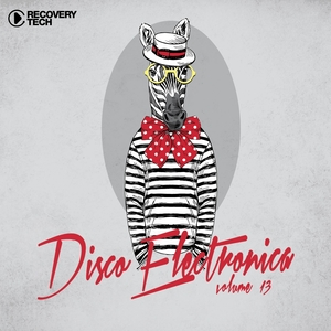 VARIOUS - Disco Electronica Vol 13