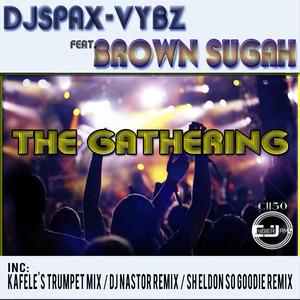 DJ SPAX VYBZ feat BROWN SUGAH - The Gathering