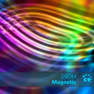 DSOM - Magnetic