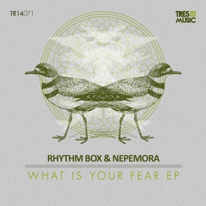 RHYTHM BOX/NEPEMORA - What Is Your Fear