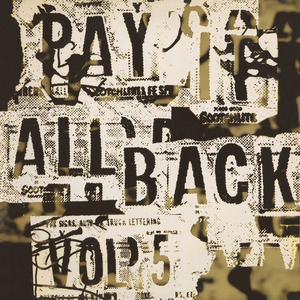 VARIOUS - Pay It All Back Vol 5
