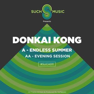 DONKAI KONG - Endless Summer