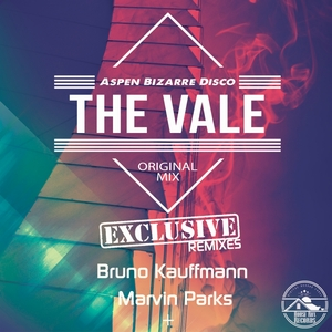 ASPEN BIZARRE DISCO - The Vale