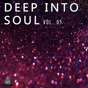 VARIOUS - Deep Into Soul Vol 05