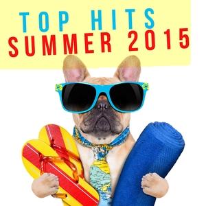 VARIOUS - Top Hits Summer 2015