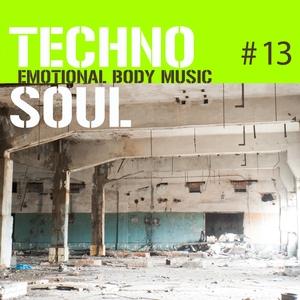 VARIOUS - Techno Soul #13: Emotional Body Music