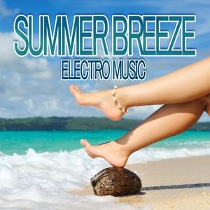 VARIOUS - Summer Breeze Electro Music