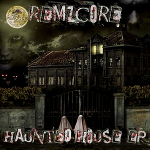 DR PEACOCE/REMZCORE/ZYCLON - Haunted House