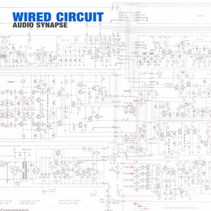 AUDIO SYNAPSE - Wired Circuit