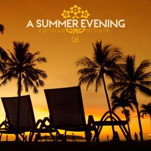 VARIOUS - A Summer Evening Vol 06