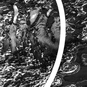 SPEED PAINTERS - Bellarine II