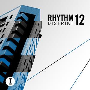 VARIOUS - Rhythm Distrikt 12