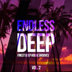 VARIOUS - Endless Deep (Finest Deep House Grooves Vol 2)