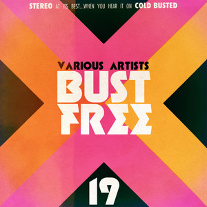 VARIOUS - Bust Free 19