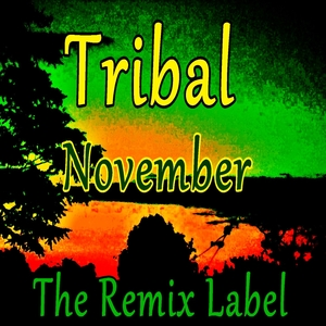 VARIOUS - Tribal November