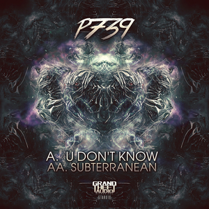 P739 - U Don't Know