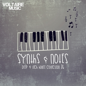 VARIOUS - Synths & Notes 26