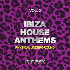 VARIOUS - Ibiza House Anthems Vol 2 (Physical Underground)