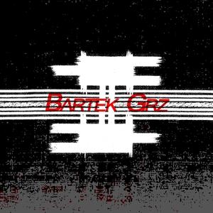 BARTEK GRZ - Shake Ya