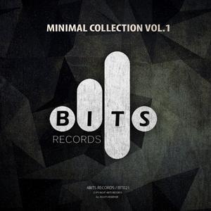 VARIOUS - Minimal Collection Vol 1