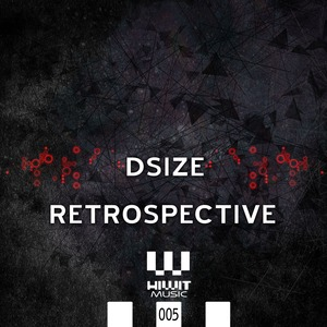 DSIZE - Retrospective