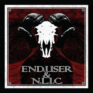 END USER/NLIC - The 9th Day