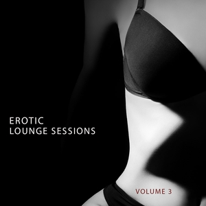 VARIOUS - Erotic Lounge Session Vol 3 (Finest In Deep House & Electronic Dance Music)