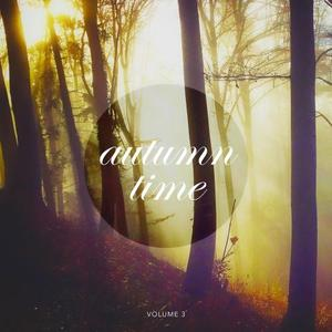 VARIOUS - Autumn Time Vol 3