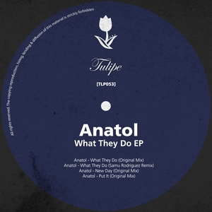 ANATOL - What They Do EP