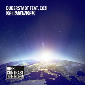 DUDERSTADT - Ordinary World