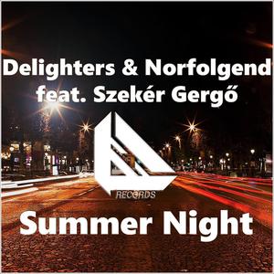 DELIGHTERS/NORFOLGEND feat SZEKER GERGO - Summer Night