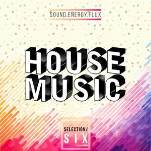 VARIOUS - House Music Selection SIX