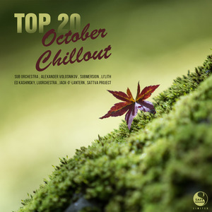 VARIOUS - Top 20 October Chillout