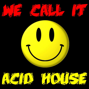 VARIOUS - We Call It Acid House