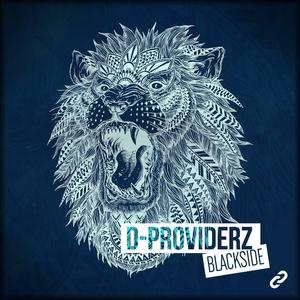 D PROVIDERZ - Black Side