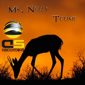 MR NELLY - Tulime